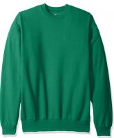 Hanes Men's Ecosmart Fleece Sweatshirt (Kelly Green Large)