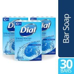 30-Count 4oz Dial Antibacterial Bar Soap spring water $9.15