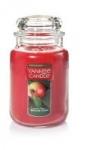 Yankee Candle Large Jar & Tumbler Candles