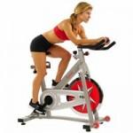 Sunny Health & Fitness Indoor Cycling Bike w/ 40 lb Flywheel (Chain Drive)