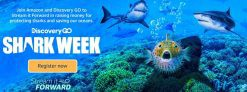 Stream in Discovery GO App Shark Week on Fire Devices, Get $25 Amazon Credit